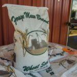 wheat seed 2